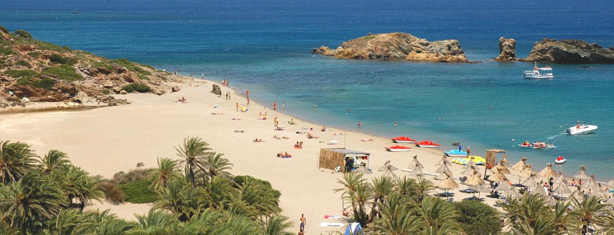 Vai Beach op Kreta is een prachtig strand met palmbomen